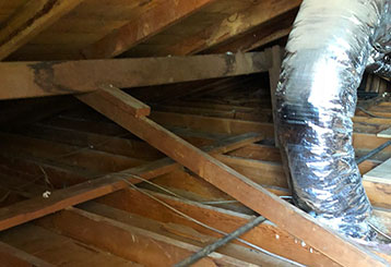 Crawl Space Cleaning | Attic Cleaning Irvine, CA